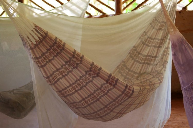 Best Hammock with Mosquito Nets